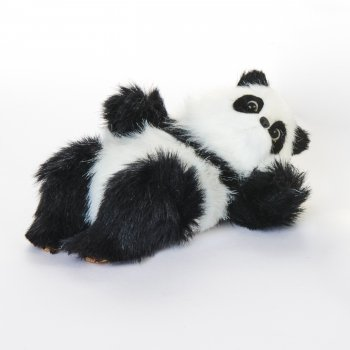 Panda bjørn i pels, der ligger på ryggen