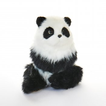 Panda bjørn i pels, der sidder